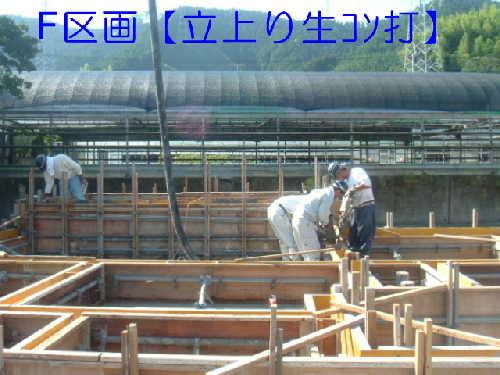20050905-2.jpg