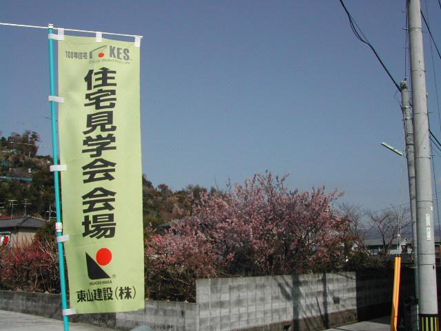 20060304-1.jpg